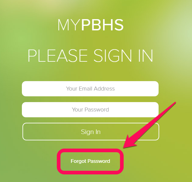how to reset password lost email and change phone number
